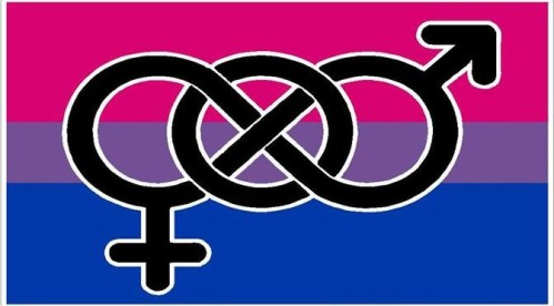 Bisexual-Pride-Flag-672x372